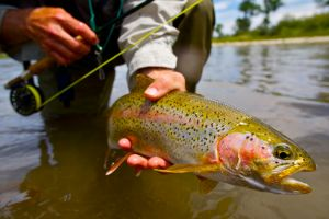 23 trout fishing at its finest