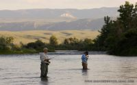 11 bighorn river's best fly fishing