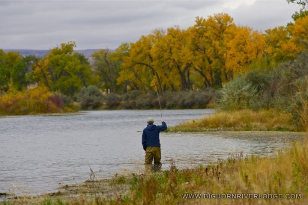 Fall on the Bighorn